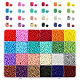 Nibiru 10000PCS Glass Seed Beads 24 Colors Opaque Pony Beads Multicolor Kit Assorted Beads in Box, Small Beads for Bracelet Making Jewelry Making (3mm)