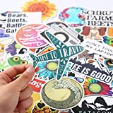 BLOUR TD ZW 50 unids/Set Pegatinas de Dibujos Animados Pegatinas Lindas para niños Pegatinas paraAnimalesImpermeablesBiker Laptop Motor DIY Stickers Pack