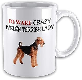 errterfte Beware Crazy Welsh Terrier Lady Funny Novelty Gift Mug Tea Cup Ceramic Mug Coffee Mug Best Gift