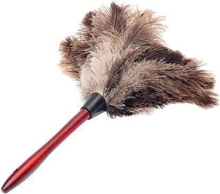 LJGXR Brosse de Nettoyage Dusters Dusters Plume Duster Anti-Statique Autruche Feather Brush Dust Nettoyage en Bois US Nett...