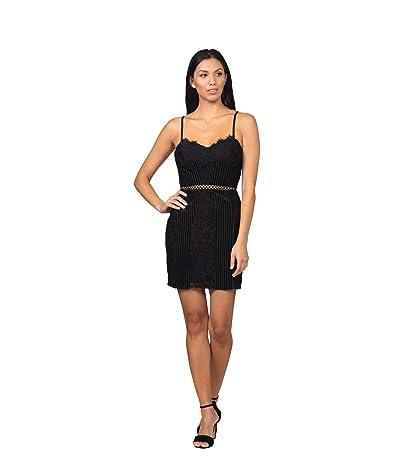 Bebe Lace Velvet Mini Dress