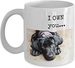 funny black Labrador Retriever gift mug -- I OWN you... - 11 oz. ceramic coffee mug perfect for black lab lovers and owners