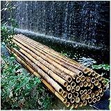 Storage jar Recinzione Giardino Schermo per la Privacy del recinto di bambù Spessore del Tubo di bambù 2,5-2,8 cm Parabrezza Resistente alle intemperie o Sorgente ombreggiante Non macchiata
