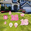 Happy 16th Birthday Party Yard Sign Set of 8 Pink Sweet 16 Birthday Yard Signs with Stakes and Outdoor Lawn Decoration for Girls