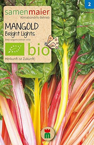 Samen Maier 862 Mangold Bright Lights (Bio-Mangoldsamen)