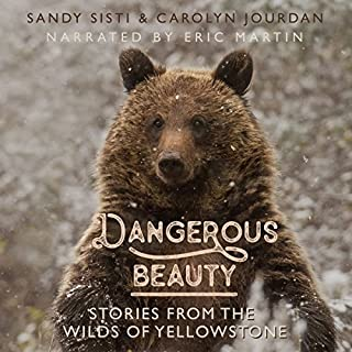 Dangerous Beauty audiobook cover art
