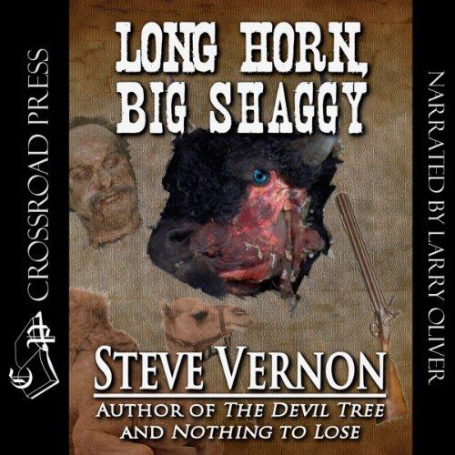 Long Horn, Big Shaggy audiobook cover art