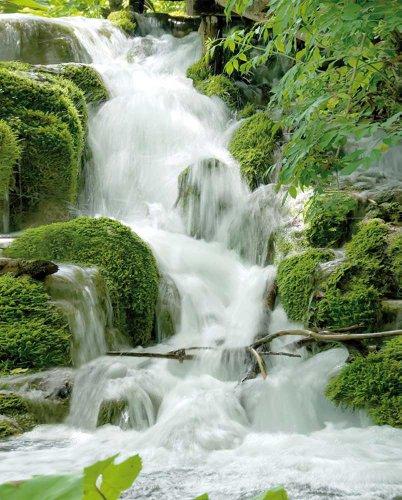 Wasserfälle - Feng Shui - Mini Poster Beach Poster Foto Wasserfall Wald - Grösse 50x40 cm