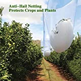 Agfabric Anti Hail Netting 15ft x 50ft, Bird Netting Alternative - Protect Fruits and Plants from Hail Damage, White