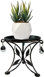 Metal Potted Plant Stand Mini Desktop Succulent Holder Iron Flower Pot Trivet for Office Indoor Countertop 5.5