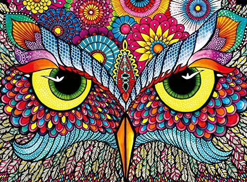 Buffalo Games Owl Eyes Jigsaw Puzzle from the Vivid Collection (1000 Piece) by Buffalo Games