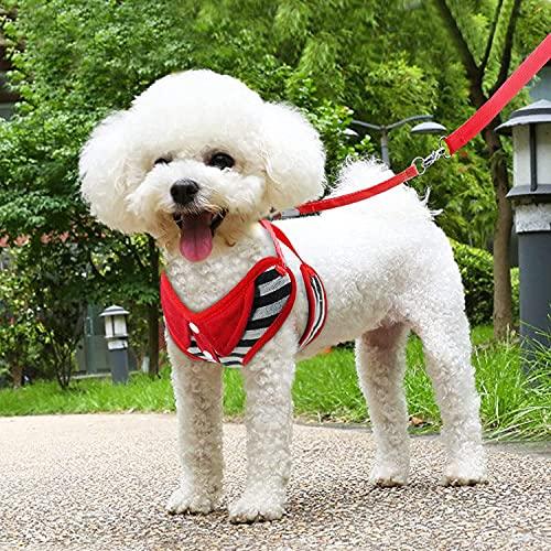 NYCUABT Hundebaum Atmungsaktive Hundekabelbaum Weste Einstellbare Welpen Hundegeschirr und Leine Set für kleine mittelgroße Hunde Nylon Pet Brustgurt für Chihuahua Pet Geschenk -XL, X- Groß