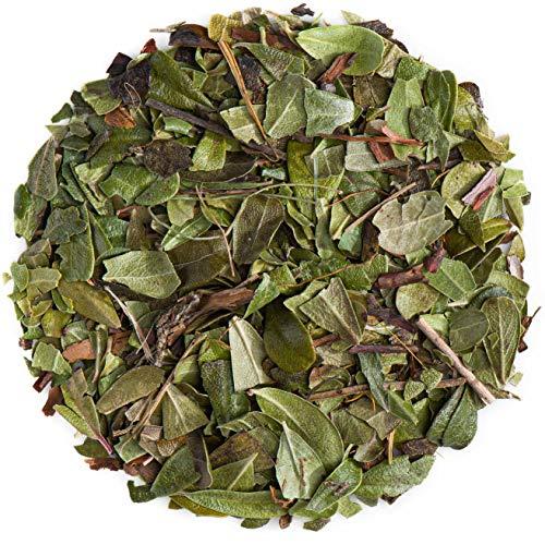 Uva Ursi Blatt Bio Bärentraube - Urvi Ursi Blätter - Baerentraubenblaetter Tee 200g