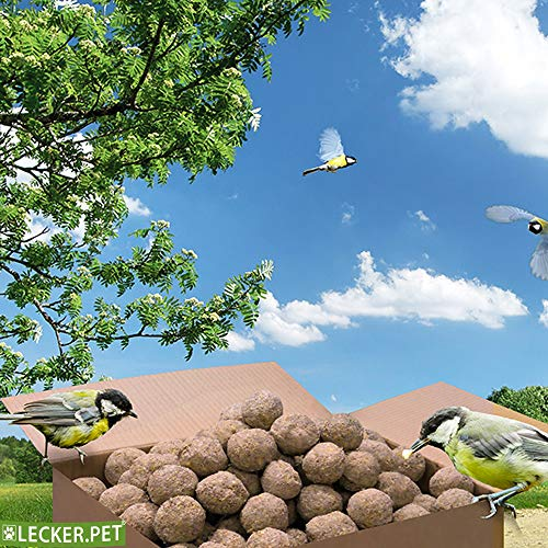 Lecker.Pet® 200 x 90 g Meisenknödel ohne Netz Wildvogelfutter Vogelfutter Vögel