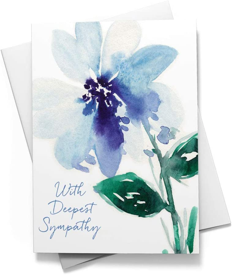 Daisy Sympathy Sale - supreme Cards Junior with 25 Greeting