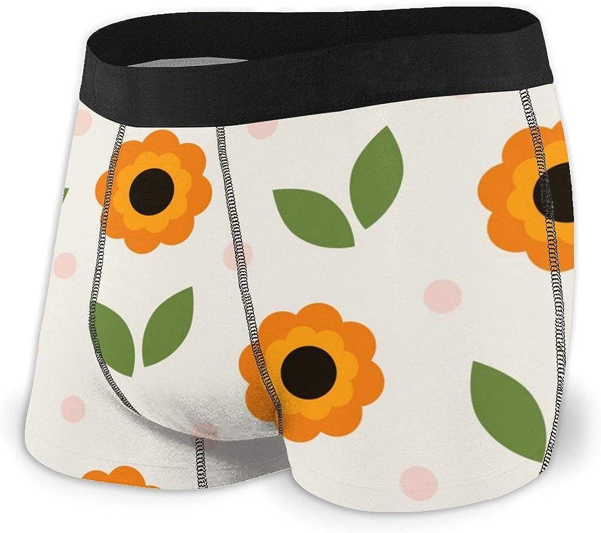 Randolph Wordsworth Mens Boxer Briefs Cute Cartoon Sunflower Lovely Breathable Underwear