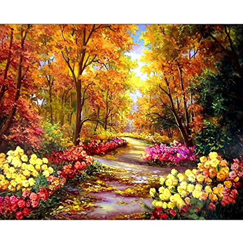 [Wooden Frame]Acrylic Paint by Numbers Kits, DIY Painting by Numbers for Adults by TOCARE,Landscape Pattern 16x20inch