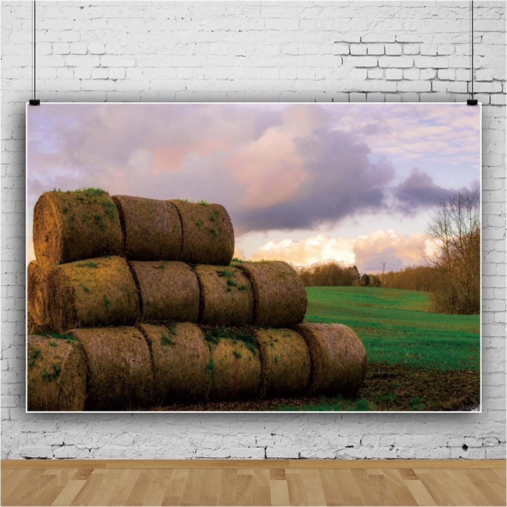 DaShan 6x4ft Polyester Rural Farmland Backdrop Agriculture Country Farmland Haystack Autumn Harvest Farm Background for Thanksgiving Day Photography Kids Adults Photo Studio Props Wallpaper