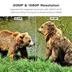 "TOGUARD Wildlife Camera 20MP 1080P Trail Game Cameras with Night Vision 130° Detection Motion Activated Waterproof Wildlife Hunting Cam with 0.3s Trigger Speed 2.4"" LCD IR LEDs"
