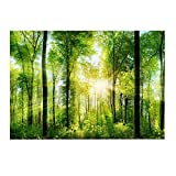 FILFEEL Aquarium Decor Background 3D Effect Fish Tank Poster PVC Adhesive Decor Sticker Paper Cling Decals Sunshine and Forest Style (61 x 41cm)