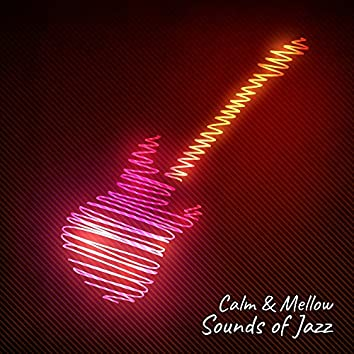 Calm & Mellow Sounds of Jazz – Relaxing Jazz Note, Instrumental Sounds, Best Background Music, Easy Listening