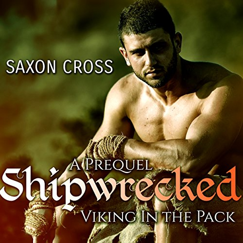 Shipwrecked: Viking in the Pack cover art