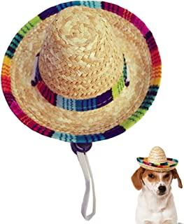 Best sombreros for dogs Reviews