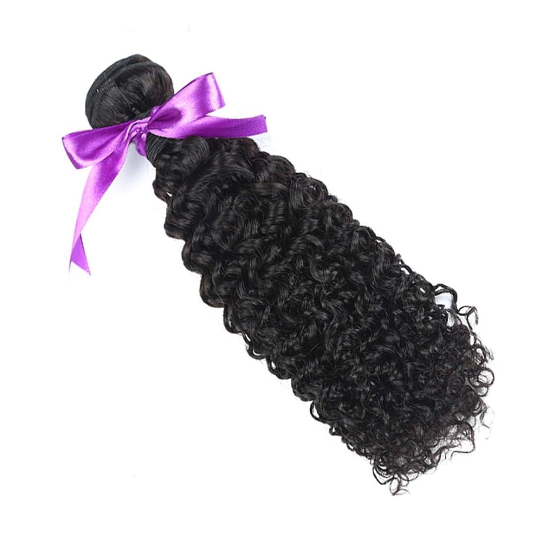 開拓者頭パンチかつら マレーシアの巻き毛の束8-28インチ100%の人間の毛髪は、Remyの毛のナチュラルカラー1個の髪の束を織ります (Stretched Length : 24inches)