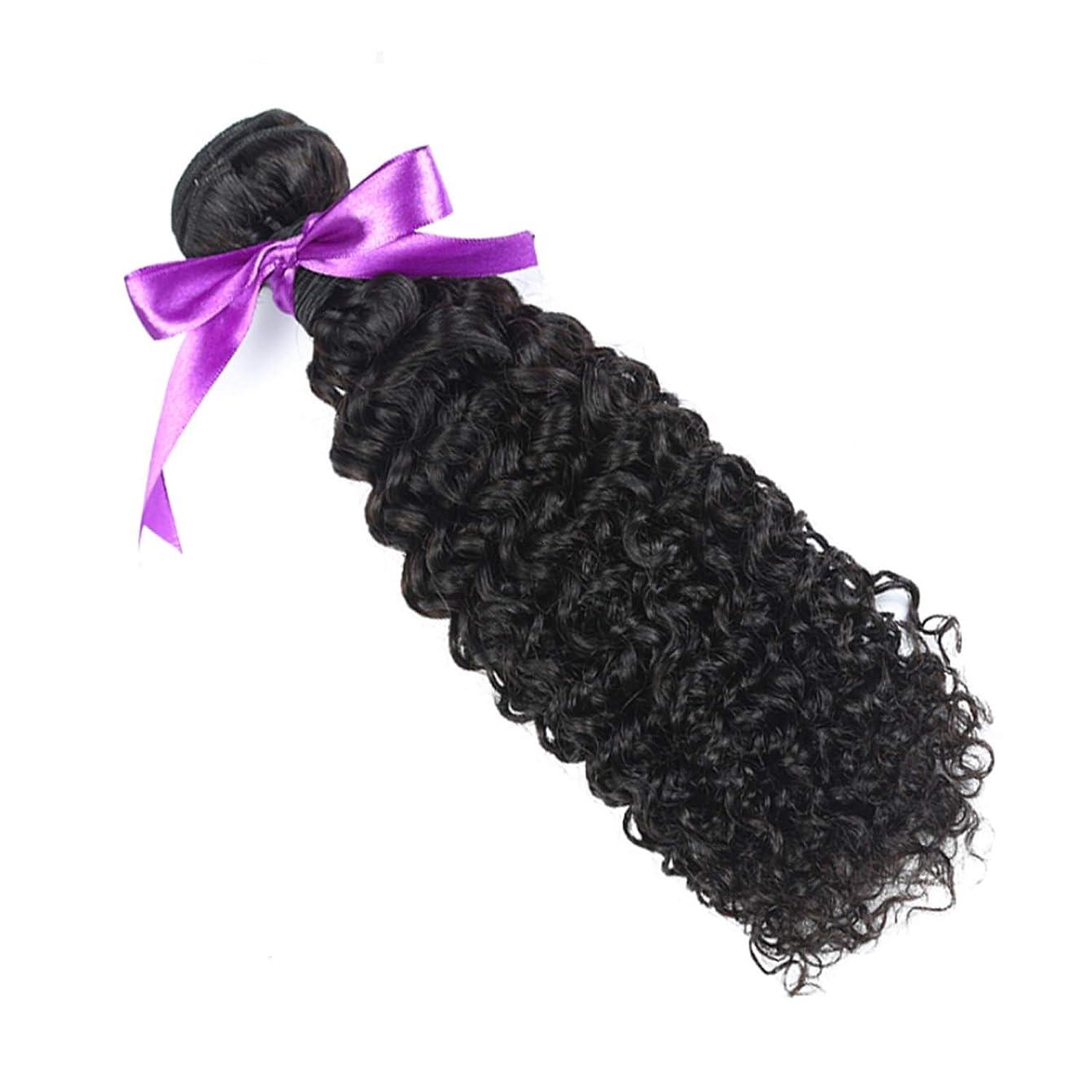 世界協力的ウィスキーマレーシアの巻き毛の束8-28インチ100%の人間の毛髪は、Remyの毛のナチュラルカラー1個の髪の束を織ります かつら (Stretched Length : 16inches)