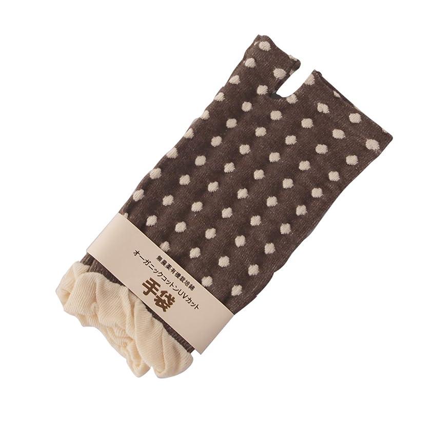 独裁なぜなら前件指先なし水玉短手袋ブラウン:オーガニックコットン100% 寒い時期キーボードをたたくとき,日焼けの気になる方へ