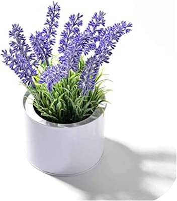 Amazon Com Simulation Flowers Potted Plant Lavender Bonsai