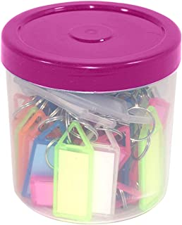 TULMAN 50 Pcs Multicolor ID Name Keyrings & Keychains Key Tags with Label