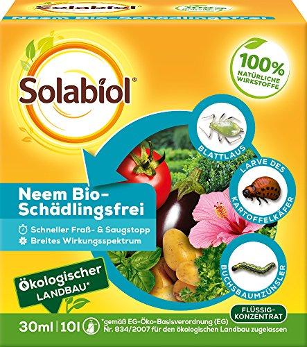 Solabiol Neem Bio-Schädlingsfrei, biologische Schädlingsbekämpfung an Zierpflanzen, Kräutern, Kartoffeln und Gemüse, (auch zur Blattlausbekämpfung geeignet), 30 ml