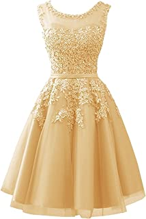 Tulle Short Homecoming Dress Junior Prom Party Dress Evening Gowns Lace s
