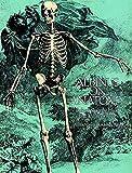 Albinus on Anatomy (Dover Anatomy for Artists) - Robert Beverly Hale