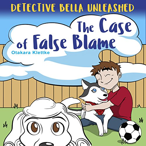 The Case of False Blame audiobook cover art