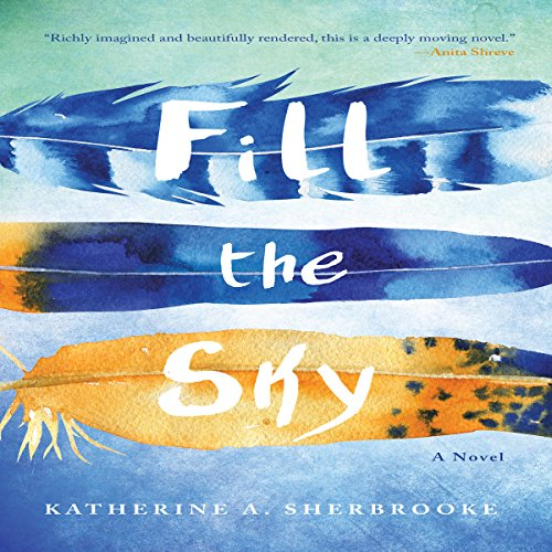 Fill the Sky audiobook cover art