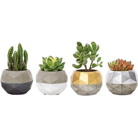 Succulent Pot Handmade Concrete Succulent Planter Succulent Decor