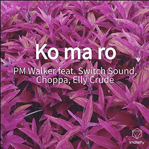 PM Walker feat. Switch Sound, Choppa & Elly Crude
