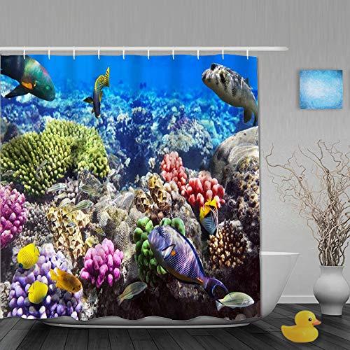 FAKAINU Duschvorhang,Lot Hurghada Riff Korallenfisch Rot Ägypten Tiere Wildtiere Natur Ozean Leben Aquarium Hawaii Unter Wasser,mit 12 Ringen Waschbar Langhaltig Hochwertig,180 * 180CM