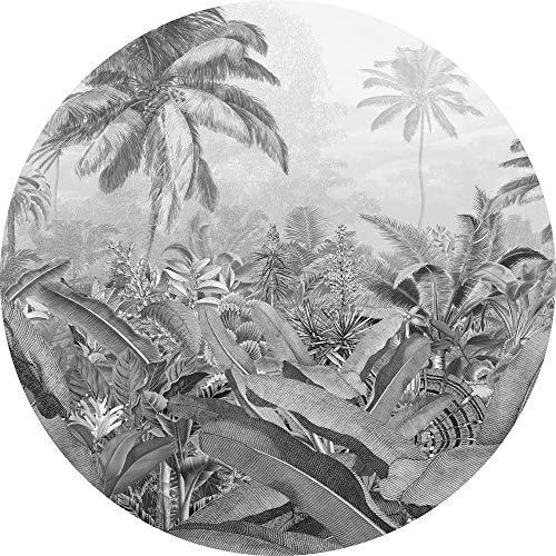 Komar DOT runde und selbstklebende Vlies Fototapete Amazonian Spirit - Ø Durchmesser 125 cm - 1 Stück - Regenwald, Dschungel, Amazonia, Tapete, Wandbild, Designtapete - D1-055