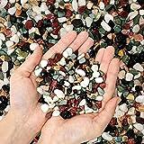 2.7 lb Mixed Five Color Decorative Rocks Stones Pebbles-Garden Ornamental Gravel for Potted Plants,Succulent ,Cactus Bonsai,DIY ,Vase Fillers,Pumice,Aquarium,Terrarium, Fairy Gardening,Top Dressing.