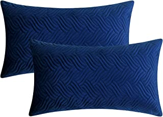 Artcest Set of 2, Decorative Patterned Velvet Lumbar Throw Pillow Cases for Sofa Couch and Bed, 12x20, Royal Blue, Covers Only