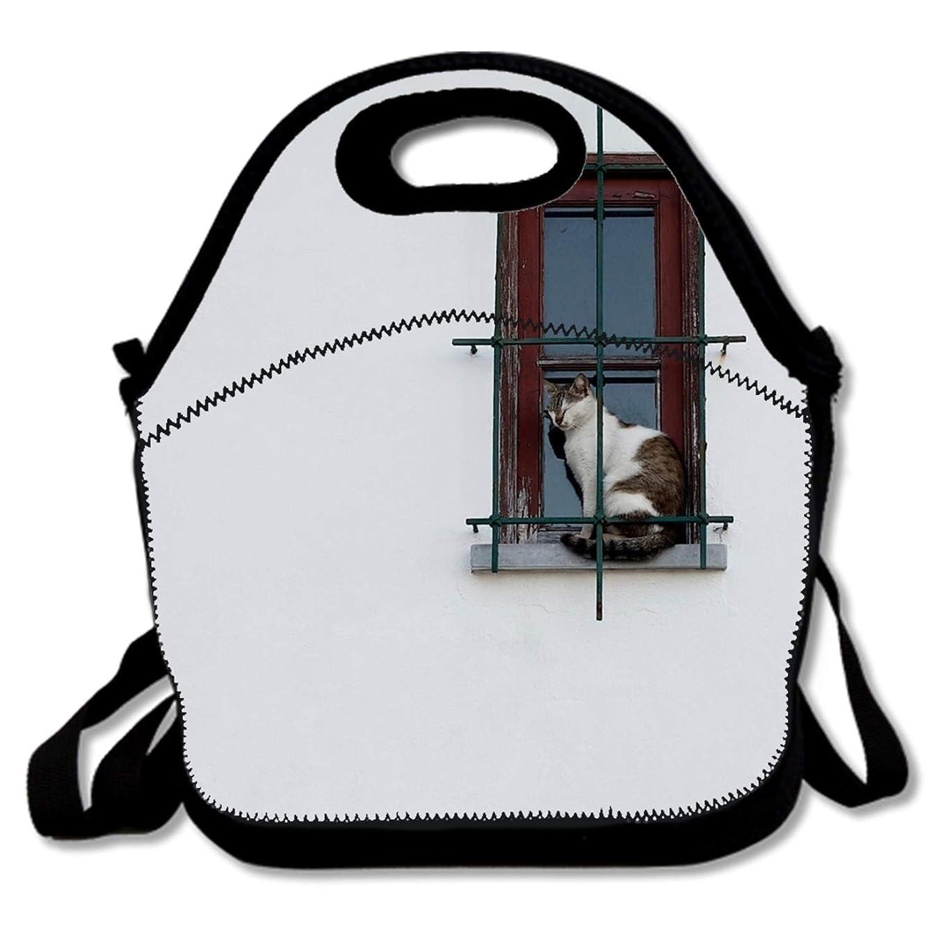 慣性フォージ帝国シンプルな背景の壁動物猫ペットウィンドウランチバッグ/ランチボックス/特殊/ピクニックバッグに昼食を絶縁クーラートラベルオーガナイザーを来ることはありません