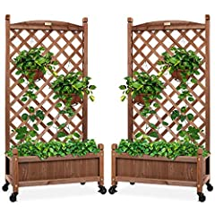 SET OF 2: Two identical planters doubles your decorating opportunities; grow decorative plants in one and climbing fruits and vegetables in the other! DIAMOND LATTICE: A 48-inch trellis is woven in a tight, diamond pattern to provide structural suppo...
