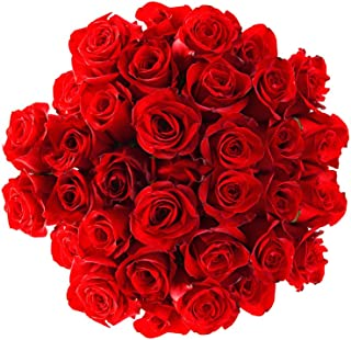 Flower Delivery Service BloomsyBox- 24 Long Stem Red Roses Hand-tied Bouquet -No Vase