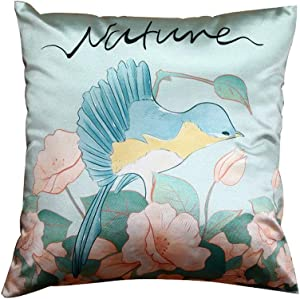 Descubre tu estilo - Almohadones decorativos | Amazon.com