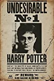 Close Up Harry Potter Poster Undesirable No. 1 (61cm x