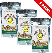 3 Pack Indian Nut 36 Seeds for Weight Loss original Nut,Indian seed
