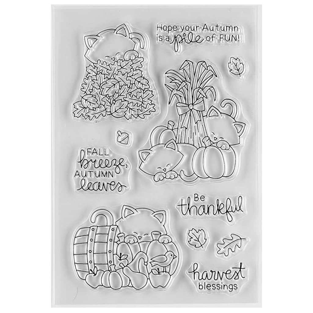 MaGuo Autumn Clear Rubber Stamps Pumpkin Havest Blessing for DIY Scrapbooking Paper Craft or Card Making Decoration
